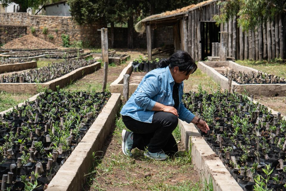Hayet with her plants. She is the president of the association Sidi Bou Zitoun, located in Ghardimaou, in the border region of Jendouba.