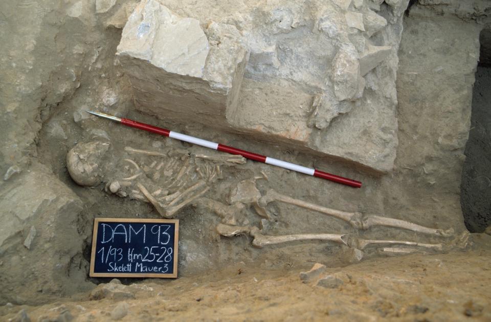 The skeleton of gladiator Palumbos from the necropolis in Ephesus, Turkey.