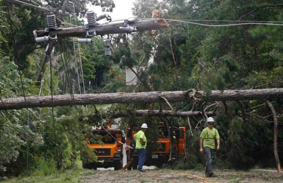 Workers remove downed trees during cleanup operations in the aftermath of Hurricane Hermine in Tallahassee, Florida September 2, 2016.