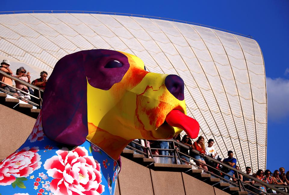 Spectators look at a large dog-shaped lantern as part of celebrations for the Chinese Lunar New Year and marking the Year of the Dog in Sydney, Australia February 16, 2018.
