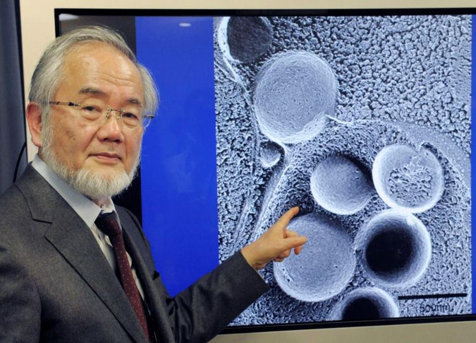 Yoshinori Ohsumi is pictured in Tokyo, March 25, 2015 in this photo released by Reuters via Japanese news agency Kyodo.