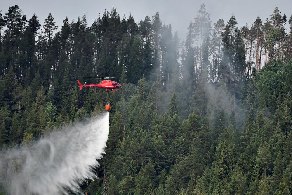 A helicopter drops water on a wildfire next to the village Grotingen in Bracke municipality in central Sweden.