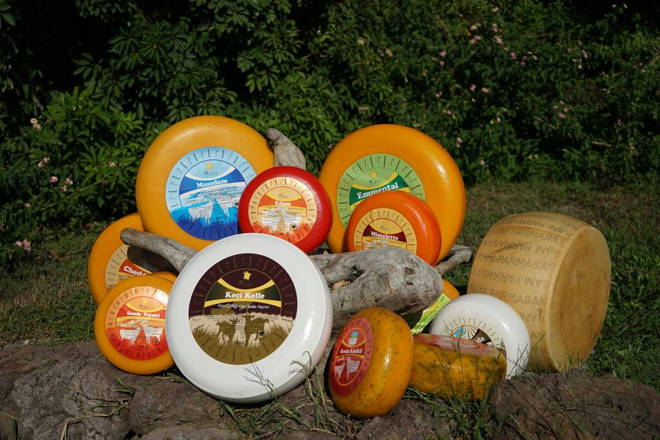 A collection of Rani Farm cheeses.