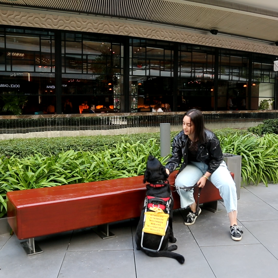Trainer Burcu Bora with a guide dog at Zorlu shopping centre.