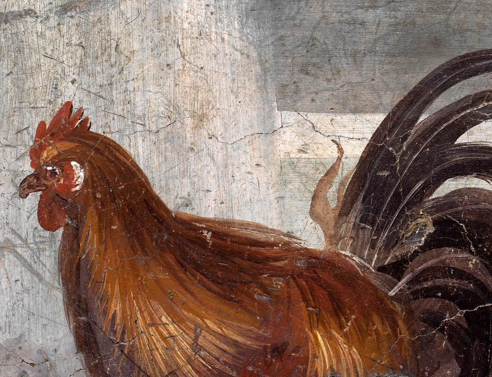 A fresco on an ancient counter depicting a rooster that was discovered during excavations in Pompeii, Italy, can be seen in this photo published on December 26, 2020.